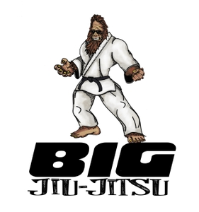 Great Northeast BJJ Podcast podcast - Free on The Podcast App