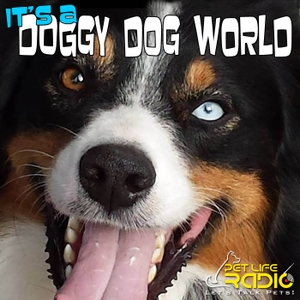It's A Doggy Dog World - Dog Podcast about dogs as pets & caring for your pet dog, - Pets & Animals on Pet Life Radio (PetLif by Liz Palika