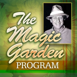 The Magic Garden by Mort White