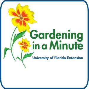 Gardening in a Minute
