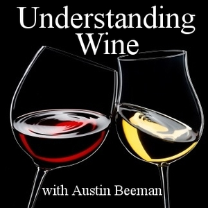 Understanding Wine:  Austin Beeman's Interviews with Winemakers by Austin Beeman