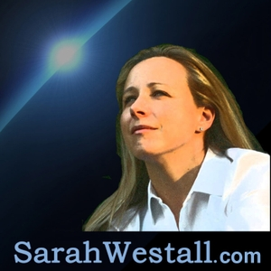 Business Game Changers by Sarah Westall