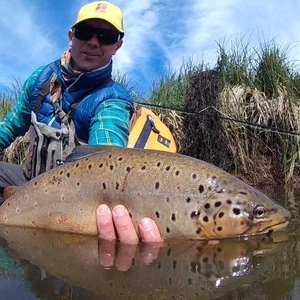 The MEND Fly Fishing Podcast with Joe Rotter and Red's Fly Shop by None