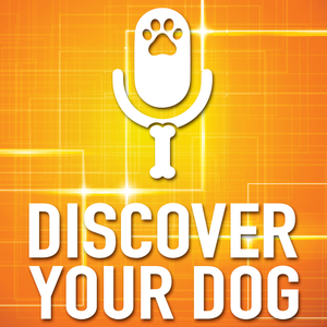 Discover Your Dog by FamilyDogFusion