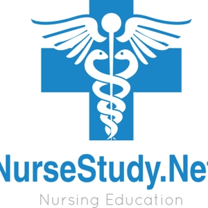 NurseStudy.Net by Anna @ NurseStudy.Net