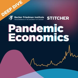 Pandemic Economics by Stitcher & Becker Friedman Institute for Economics