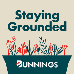 Staying Grounded by Bunnings