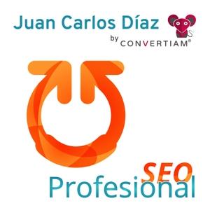SEO Profesional es un Podcast de SEO| SEM | Analítica | CRO | WPO | Marketing Online & la actualidad de este fantástico sec by Juan Carlos Díaz  | SEO | Adwords | Analítica | WPO| CRO