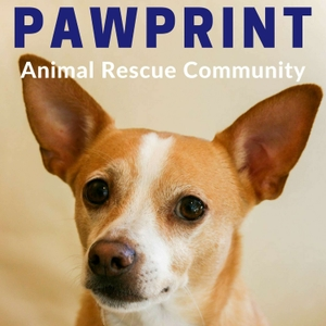 Pawprint | animal rescue podcast for dog, cat, and other animal lovers by Nancy & Harold Rhee focus on animal rescue, foster, adoption, protection & welfare in a shelter, SPCA, or humane society. Volunteer, walk, or save a dog, cat, or pet.