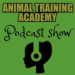 Animal Training Academy by Ryan Cartlidge