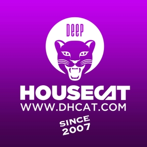 Deep House Cat by Alex B. Groove