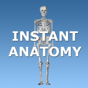Instant Anatomy by Dr Robert Whitaker