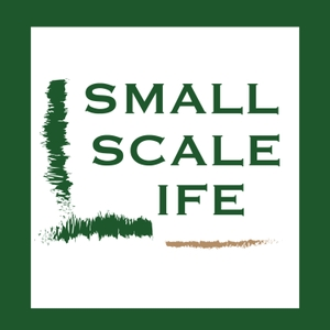 Small Scale Life by Small Scale Life