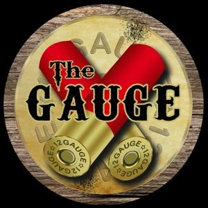 The Gauge by The Gauge