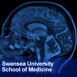 School of Medicine, Swansea University: Neuroscience by Dr Phil Newton & Dr Samuel Webster