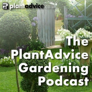 The PlantAdvice Gardening Podcast by PlantAdvice.co.uk | On-line Garden and Plant advice