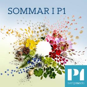 Sommar & Vinter i P1 by Sveriges Radio