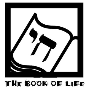 The Book of Life: Jewish Kidlit (Mostly) by Heidi Rabinowitz