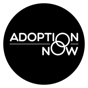 ADOPTION NOW - Telling Your Adoption Story by April Fallon