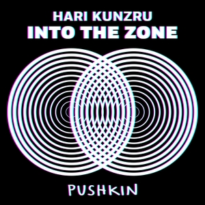 Into the Zone by Pushkin Industries