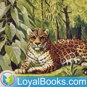 The Burgess Animal Book for Children by Thornton W. Burgess by Loyal Books