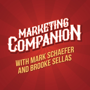The Marketing Companion by Mark Schaefer and Brooke Sellas
