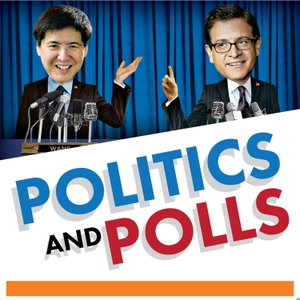 Politics and Polls by Princeton University