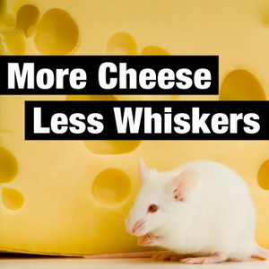 More Cheese Less Whiskers by Dean Jackson