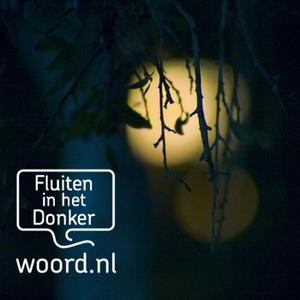 Fluiten in het donker by None