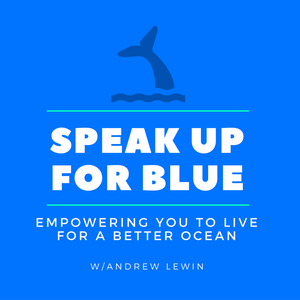 Speak Up For The Ocean Blue by Andrew Lewin