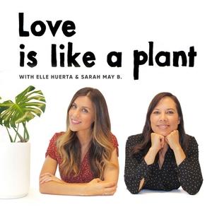 Love is like a plant by Love is like a plant