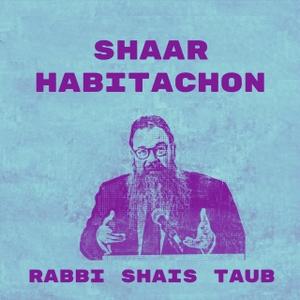 Shaar HaBitachon- SoulWords by Rabbi Shais Taub
