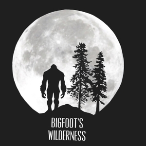 Bigfoot's Wilderness Podcast by Bigfoot's Wilderness Podcast