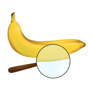 Бананы и линзы by Рома, Денис, Шевченко