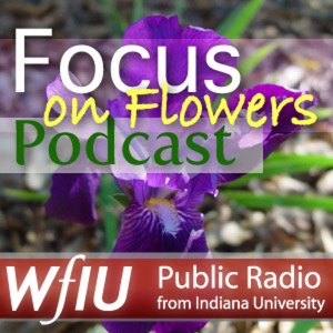 WFIU: Focus on Flowers by WFIU Public Media (wfiu.org)