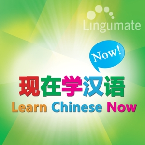 现在学汉语 Learn Chinese Now by lingumate