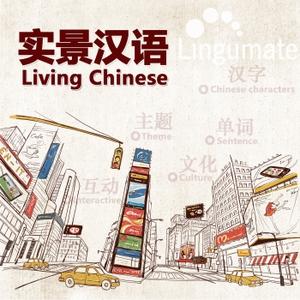 实景汉语Living Chinese by 国际在线
