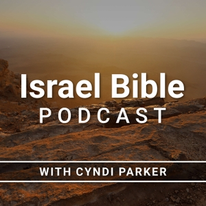 Israel Bible Podcast by Dr. Cyndi Parker