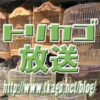 トリカゴ放送 by トリカゴ放送