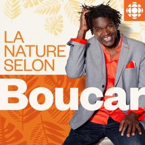 La nature selon Boucar by Radio-Canada
