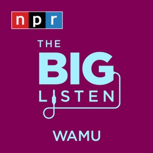The Big Listen by NPR