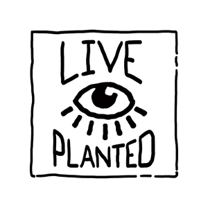 Live Planted- Practical Vegan Living by alyssa