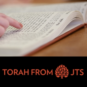 JTS Torah Commentary by The Jewish Theological Seminary