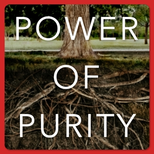 Power of Purity | Helping Men to Honor God with their Sexual Gift by Tony Ingrassia