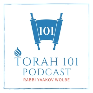 TORAH 101 - By Rabbi Yaakov Wolbe by Rabbi Yaakov Wolbe