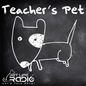 Teacher's Pet Podcast - Training Pets & Pet Obedience  - Pets & Animals on Pet Life Radio (PetLifeRadio.com) by Nan Talleno