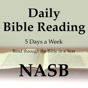Daily Bible Reading: NASB Translation