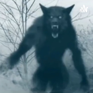 In The Dark (Bigfoot, Dogmen, Aliens, All Things Supernatural) by Tracie Bush