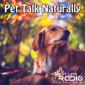 Pet Talk Naturally - Caring For Our Pets Naturally - Pets & Animals on Pet Life Radio (PetLifeRadio.com) by Kim Bloomer & Jeannie Thomason