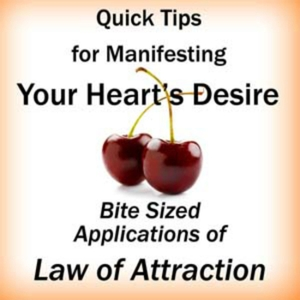 Quick Tips for Manifesting Your Heart's Desire: Bite Sized Applications of Law of Attraction by Rebbie Straubing
